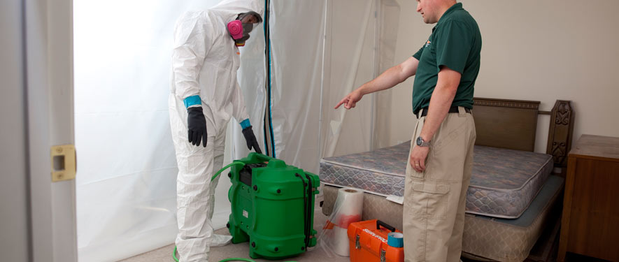 Fort Myers, FL mold removal process